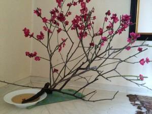 田中邸玄関の梅